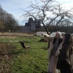 Permaculture gardens @ Radhadesh, Belgium